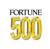 Director of Organizational Development, Fortune 500 company